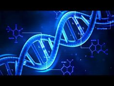 What is DNA and How Does it Work? - YouTube