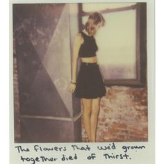 See All 65 of Taylor Swift's 1989 Polaroids ❤ liked on Polyvore featuring taylor swift, polaroids, 1989 polaroids, backgrounds y fillers