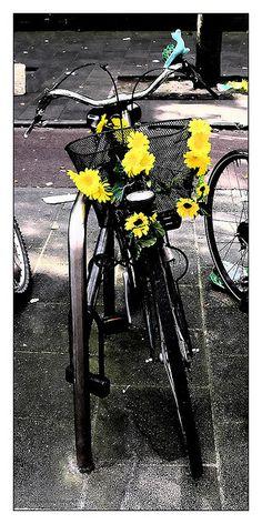 "<3  Sunflowers / ""splash"" of color #yellow"