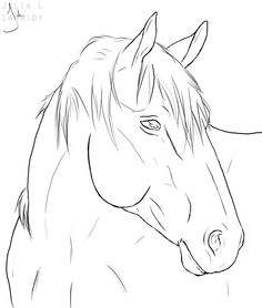 horse line drawing | horse lineart by lambidy digital art drawings paintings animals 2009 ...