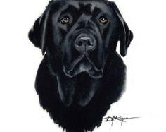 BLACK LAB Dog Art Print Signed by Artist DJ Rogers by k9artgallery