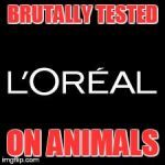 End animal testing. This company test on animals for all products. Please pass on. Help free innocent and tortured animals. DO NOT BE FOOLED.  Research For Yourselves!