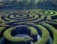 Maze garden at the Getty Center, Los Angeles