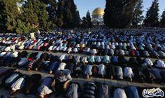 85 ألف مقدسي يؤدون صلاة العيد برحاب…: أدى عشرات آلاف المواطنين، اليوم الاثنين، صلاتي الفجر والعيد برحاب المسجد الأقصى المبارك، وتبادلوا…