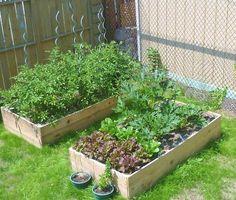 Super cheap, super easy cedar raised garden beds.