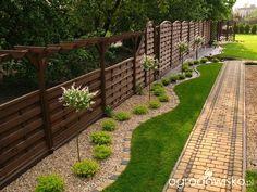 Lecę w kulki... - strona 24 - Forum ogrodnicze - Ogrodowisko