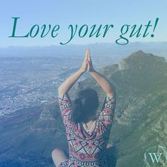 Love your gut and give it healthy probiotics like Kombucha! Kombucha, Brewing, Love You, Healthy, Instagram, Te Amo, Je T'aime, I Love You, Health