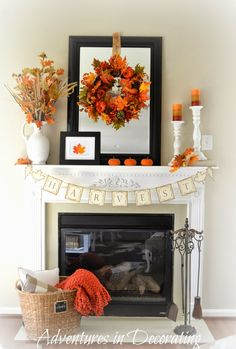 Adventures in Decorating - You have GOT to check out this blog! Amazing 'amateur' decorator. Her work has been showcased in 'Country Living' magazine.