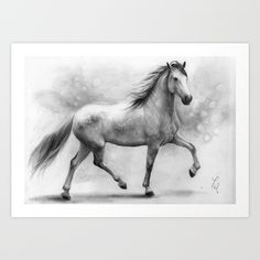 Horse+II+-+pencil+drawing+Art+Print+by+Thubakabra+-+$19.86