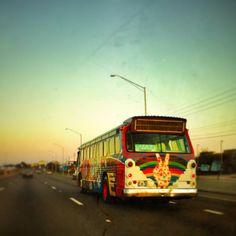 Orlando is Benny the Bus