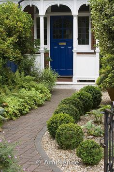 Ambience Images | Front garden with brick path to front door. gravel bed with box balls