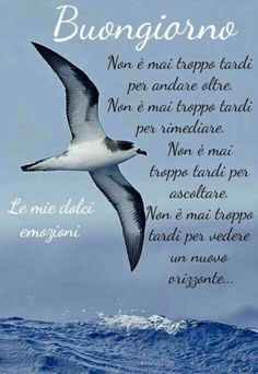 Italian Greetings, Italian Quotes, Day For Night, Good Morning Quotes, Family Quotes, Good Day, Gandhi, Smiley, Thoughts