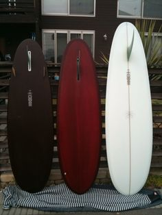 Single fin eggs. Surf is coming...