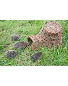 59 meilleures images du tableau abris h risson hedgehog house hedgehog house hedgehogs et. Black Bedroom Furniture Sets. Home Design Ideas