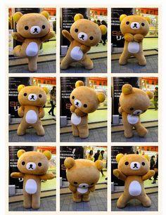 Rilakkuma dance #cute #Kawaii Shop modes4u.com