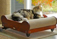 Brawny Cat Scratch & Slumber Comfort Loungers, Crdboard Cat Scratchers & Lounges