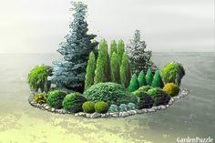 rabata iglasta - GardenPuzzle - projektowanie ogrodów w przeglądarce