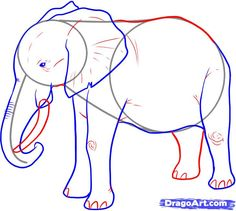 How to Draw an Elephant, Step by Step, safari animals, Animals, FREE Online Drawing Tutorial, Added by Dawn, December 16, 2007, 4:00:36 am