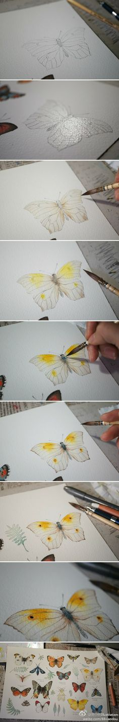 Paso a paso de una mariposa en acuarela. // Step of a butterfly with watercolor.