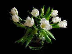 Download Wallpaper 1152x864 Tulips, White, Loose, Vase, Water, Background 1152x864 HD Background
