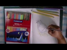 Drawing a Pigeon using Staedtler LUNA Aquarell Watercolour Pencils - YouTube