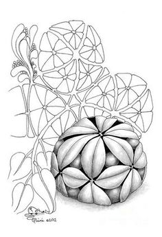 Zentangle Drawing - Hyspheria by Olivia H Keirstead Zentangle Drawings, Doodles Zentangles, 3d Drawings, Zentangle Patterns, Doodle Drawings, Doodle Art, Zen Doodle Patterns, Zantangle Art, Zen Art