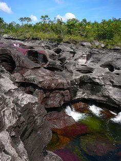 Caño Cristales es un río de Colombia que está ubicado en la sierra de la Macarena.