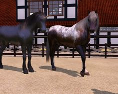 Sims 4 Horses | Downloads