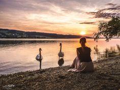 53 top Ausflugsziele & Tipps für die ganze Schweiz Seen, Alps, Longchamp, Tours, Celestial, Sunset, Travel, Outdoor, Europe
