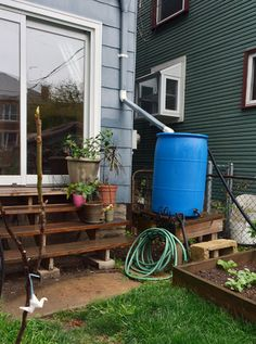 Backyard water collection system for the garden