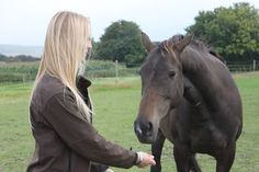Ex race horse, now in a loving retired home #happydays