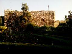 #حديقة البيئة #قلعة دمشق#دمشق