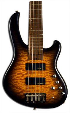 5 string bass guitar