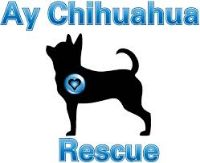 Welcome to our newest member AY CHIHUAHUA RESCUE - #AnimalRescue  #Texas https://www.luckypetdeals.com/animal-rescue/ay-chihuahua-rescue