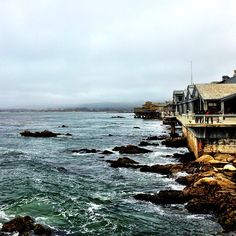 Monterey Bay Aquarium in Monterey, CA