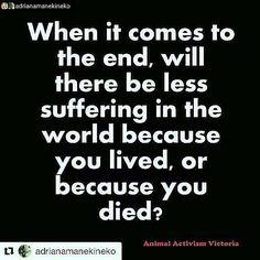 live well #vegan #govegan #peace