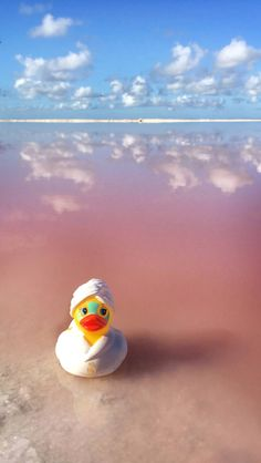 How to Arrange a Trip to Las Coloradas Pink Lakes, Mexico | Anna Everywhere