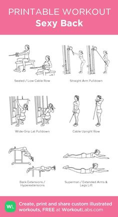 4 Back Workout Plan To Help Sculpt Sexy Back & Shoulder – Lasting Training dot Com Workout Plan Gym, Lat Workout, Dumbbell Workout, Gym Workout Programs, Pull Day Workout, Gym Programs, Workout Challange, Workout Programs For Women, Oblique Workout