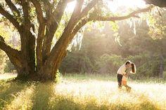 dreamy light engagement session Brilliant Photography, photos we love, inspiration   Stories by Joseph Radhik