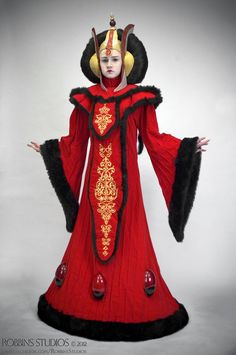 Amidala Throne Room Invasion costume