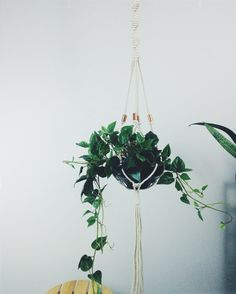 """Macrame plant hanger, hanging planter, copper plant hanger. Handmade with 100% cotton rope. 50"""" long. Fits a variety of planters from 4""""- 8"""" in diameter. Pot and plant not included."""