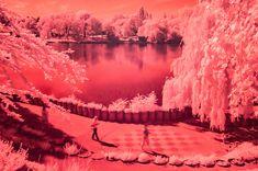 red sunday #kurparkoberlaa #vienna #wien #infrared #infrarot #red #rot #summe #sommer Vienna, Sunday, River, Pictures, Outdoor, Photos, Outdoors, Domingo, Outdoor Games