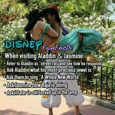 Aladdin and Jasmine questions