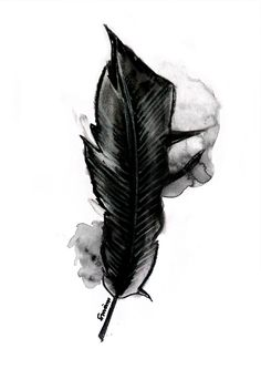 Watercolor + charcoal feather by Smäm.