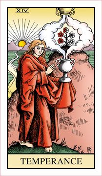Alchemical Tarot was originally published in 1995. After the deck went out-of-print, demand remained high, and prices for used copies skyroc...