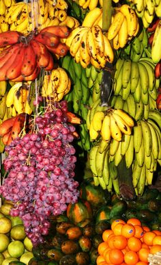 Sub-Continent - pauljenkins Ceylon Sri Lanka, Le Sri Lanka, Exotic Fruit, Exotic Birds, Countries Of Asia, Fruity Cocktails, Best Fruits, Photo Location, Tropical Paradise