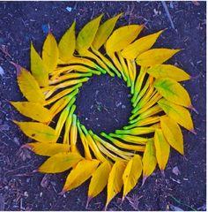 """""""danmalas"""" flower circles by Kathy Klein"""