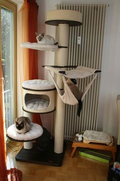 Cat Tree House, Cat House Diy, Outdoor Cat Tunnel, Cat Hotel, Diy Cat Tree, Cat Towers, Dog Furniture, Cat Playground, Cat Enclosure