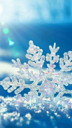 Snowflake closeup.