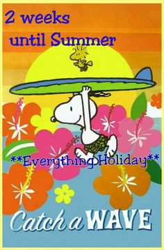 Snoopy Running Into The Surf Holding Surfboard Over His Head With Woodstock Flying Overhead With Caption - Catch a Wave Meu Amigo Charlie Brown, Charlie Brown Y Snoopy, Snoopy Love, Peanuts Gang, Peanuts Cartoon, Images Snoopy, Snoopy Pictures, Peanuts Characters, Cartoon Characters